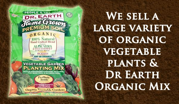 Organic Vegetables and Dr. Earth Organic Vegetable Planting Mix