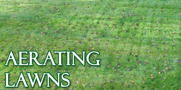 aerating lawns