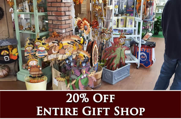 20% off entire gift shop stock