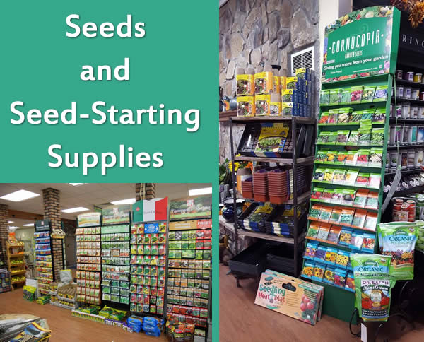 seeds and supplies