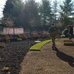 acers florist garden center Landscape Designing